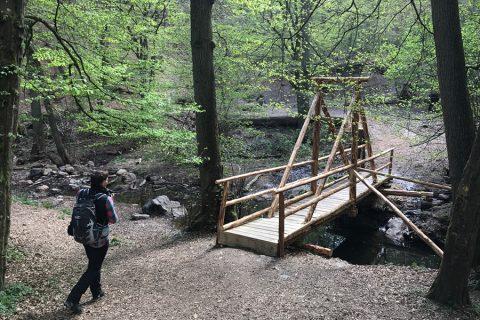 Neue Brücke Steckeschlääferklamm